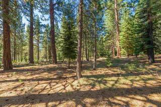 Listing Image 15 for 11072 China Camp Road, Truckee, CA 96161