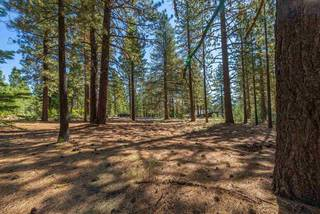 Listing Image 17 for 11072 China Camp Road, Truckee, CA 96161