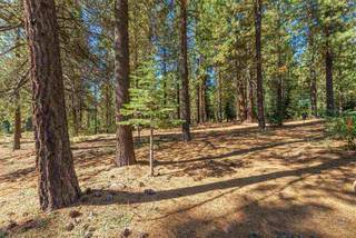 Listing Image 5 for 11072 China Camp Road, Truckee, CA 96161