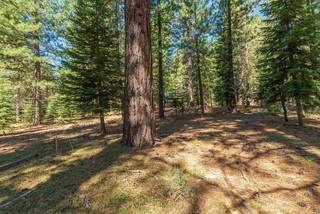 Listing Image 8 for 11072 China Camp Road, Truckee, CA 96161