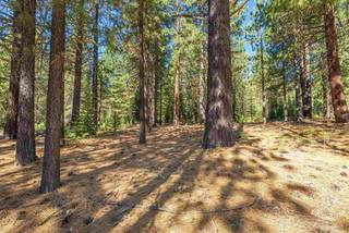 Listing Image 9 for 11072 China Camp Road, Truckee, CA 96161