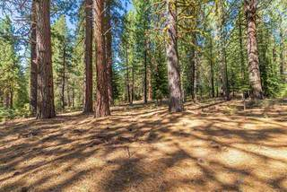 Listing Image 10 for 11072 China Camp Road, Truckee, CA 96161