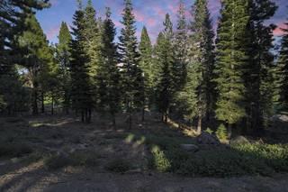 Listing Image 10 for 9308 Nine Bark Road, Truckee, CA 96161
