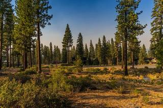 Listing Image 6 for 8312 Kenarden Drive, Truckee, CA 96161
