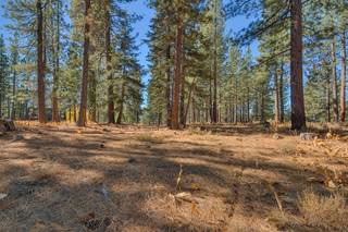Listing Image 5 for 255 Laura Knight, Truckee, CA 96161