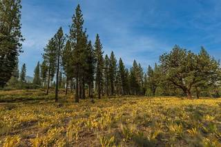 Listing Image 3 for 8297 Ehrman Drive, Truckee, CA 96161
