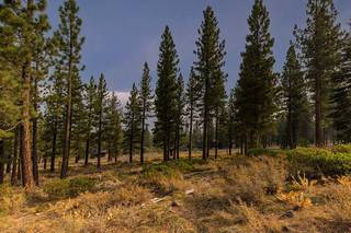 Listing Image 5 for 8297 Ehrman Drive, Truckee, CA 96161