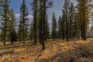 Listing Image 6 for 8297 Ehrman Drive, Truckee, CA 96161