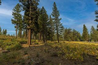 Listing Image 7 for 8297 Ehrman Drive, Truckee, CA 96161