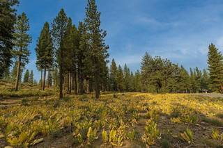 Listing Image 9 for 8297 Ehrman Drive, Truckee, CA 96161