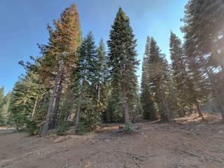 Listing Image 4 for 9262 Brae Court, Truckee, CA 96161