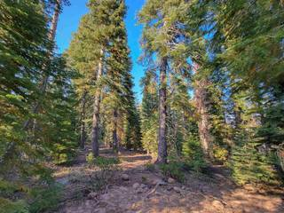 Listing Image 8 for 9262 Brae Court, Truckee, CA 96161