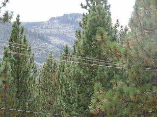 Listing Image 4 for 15036 Reed Avenue, Truckee, CA 96161