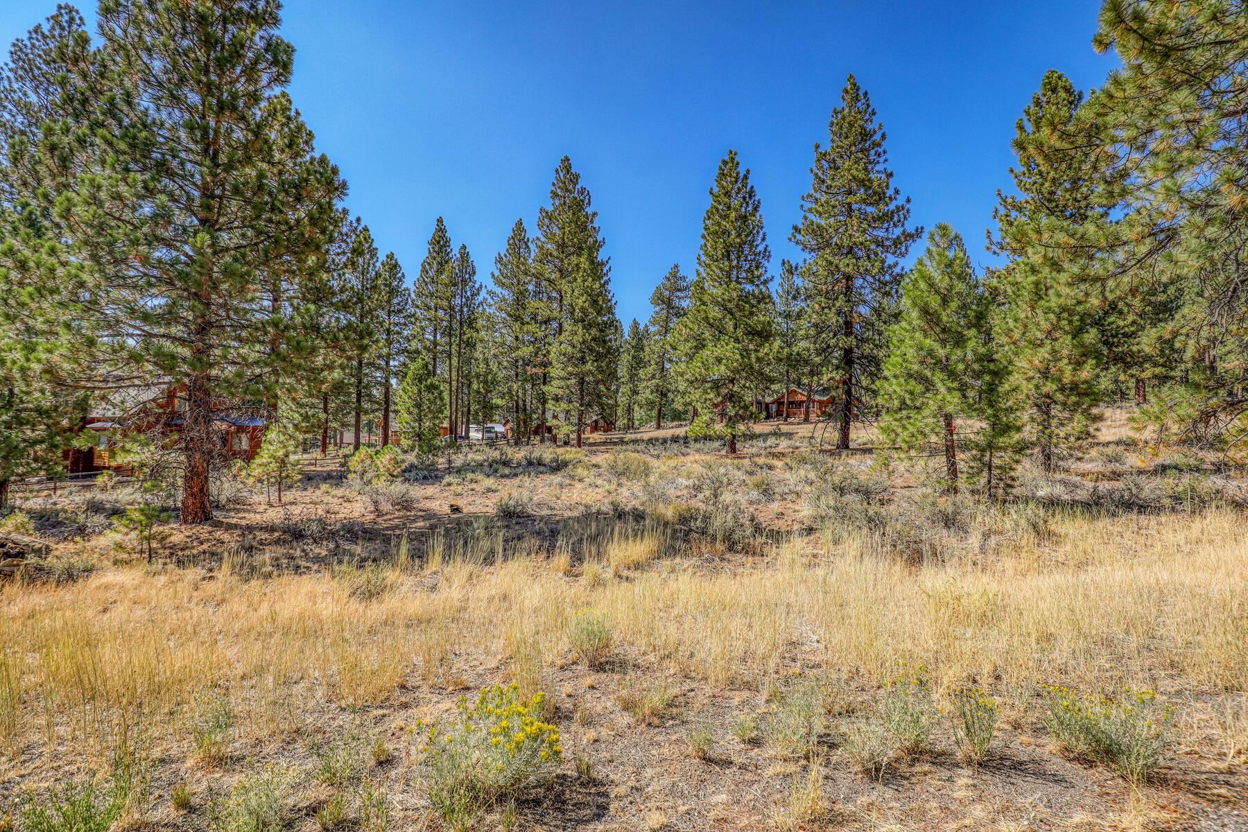 Image for 15439 Chelmsford Street, Truckee, CA 96161-2407