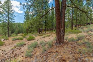 Listing Image 14 for 11636 Coburn Drive, Truckee, CA 96161