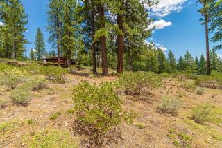 Listing Image 17 for 11636 Coburn Drive, Truckee, CA 96161