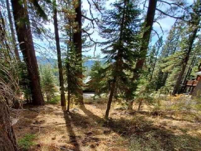 Image for 51082 Jeffery Pine Drive, Soda Springs, CA 95728