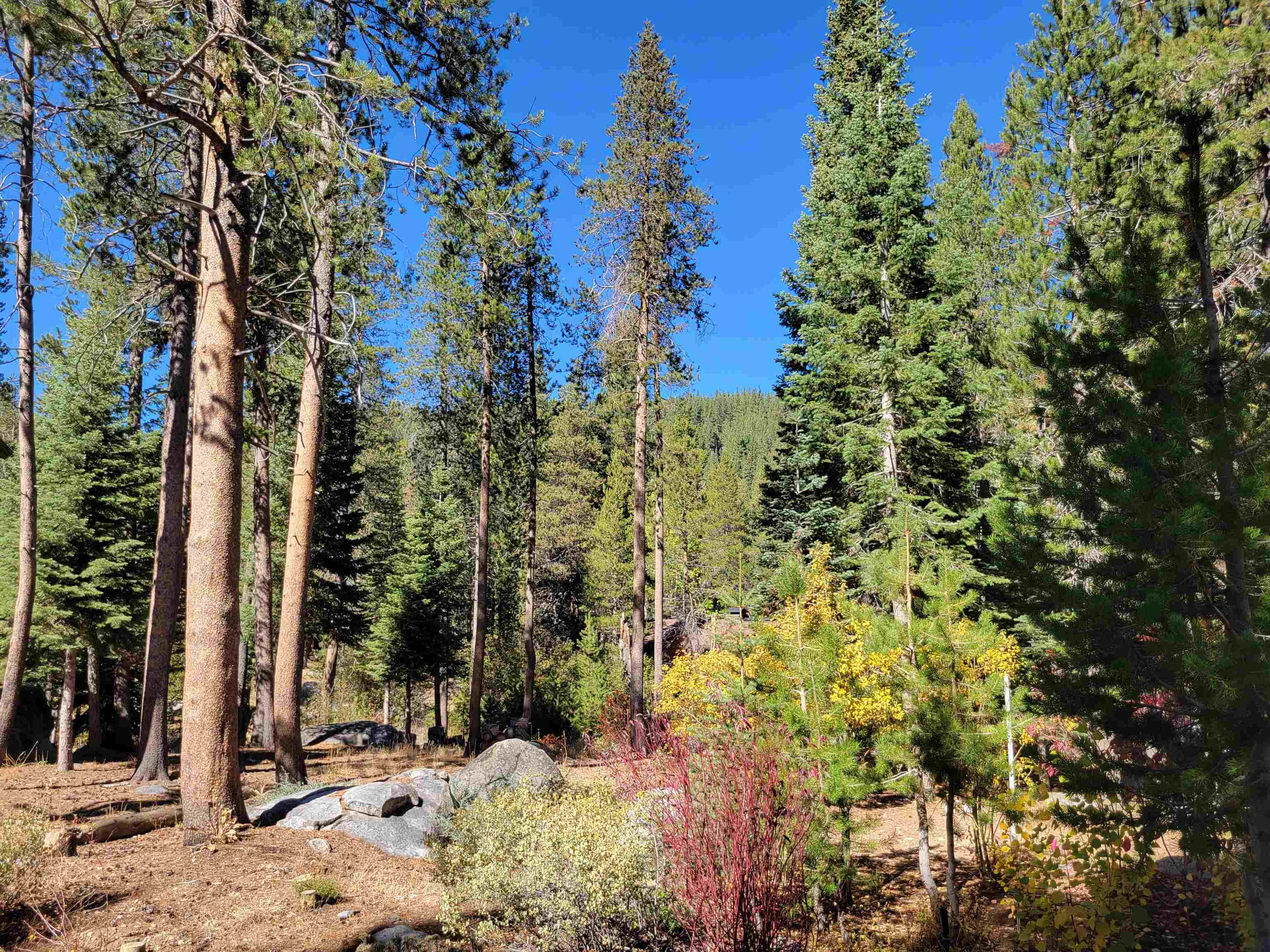Image for 366 Indian Trail Road, Olympic Valley, CA 96146