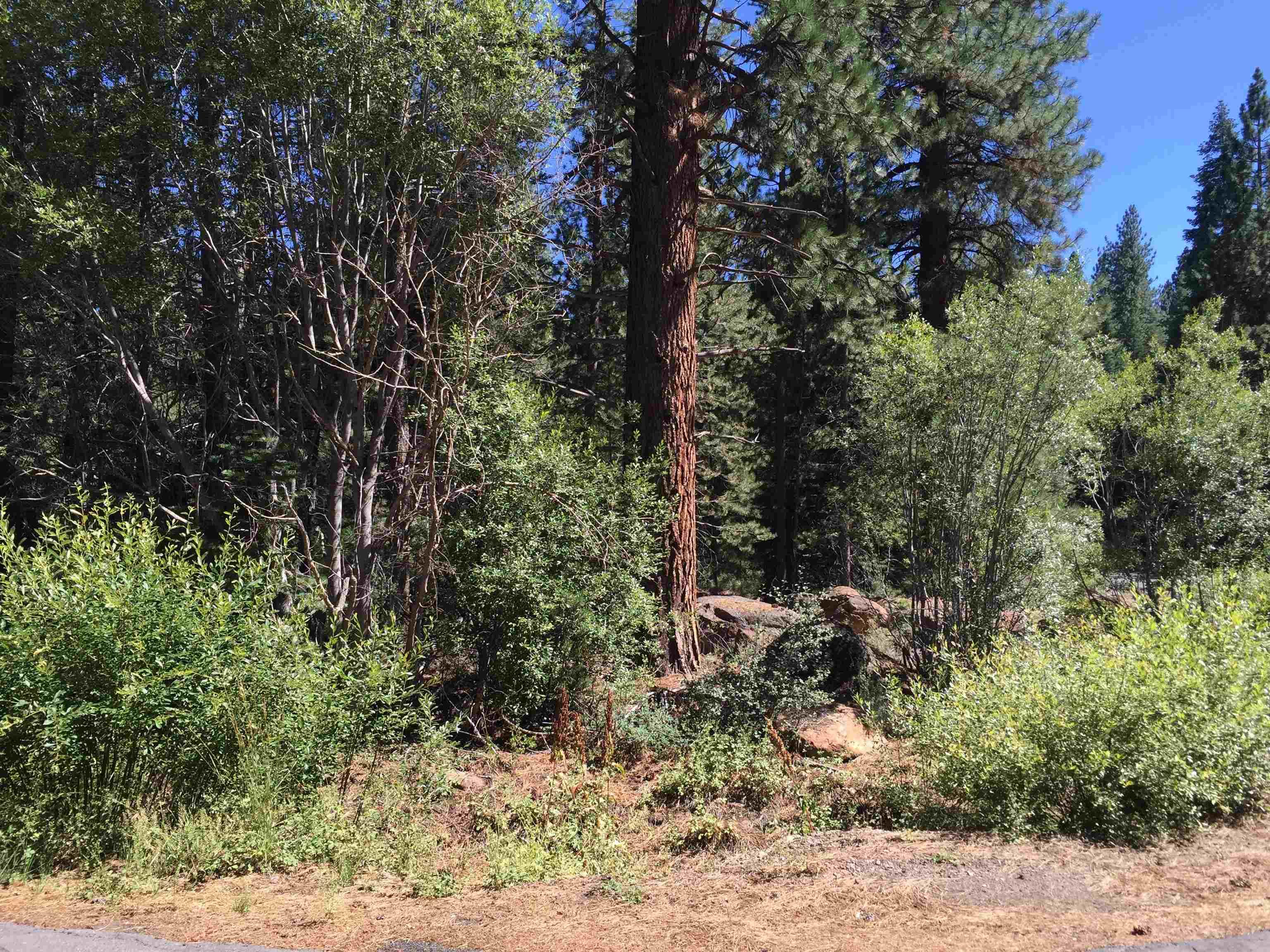 Image for 11215 Tamarack Way, Truckee, CA 96161