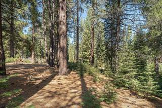 Listing Image 4 for 11830 Bottcher Loop, Truckee, CA 96161