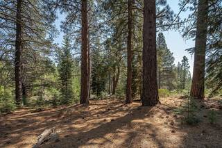 Listing Image 5 for 11830 Bottcher Loop, Truckee, CA 96161