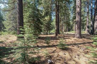 Listing Image 6 for 11830 Bottcher Loop, Truckee, CA 96161