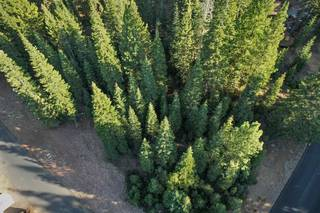 Listing Image 4 for 0 Brae Road, Truckee, CA 96161