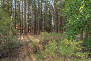 Listing Image 4 for 10145 Martis Valley Road, Truckee, CA 96161