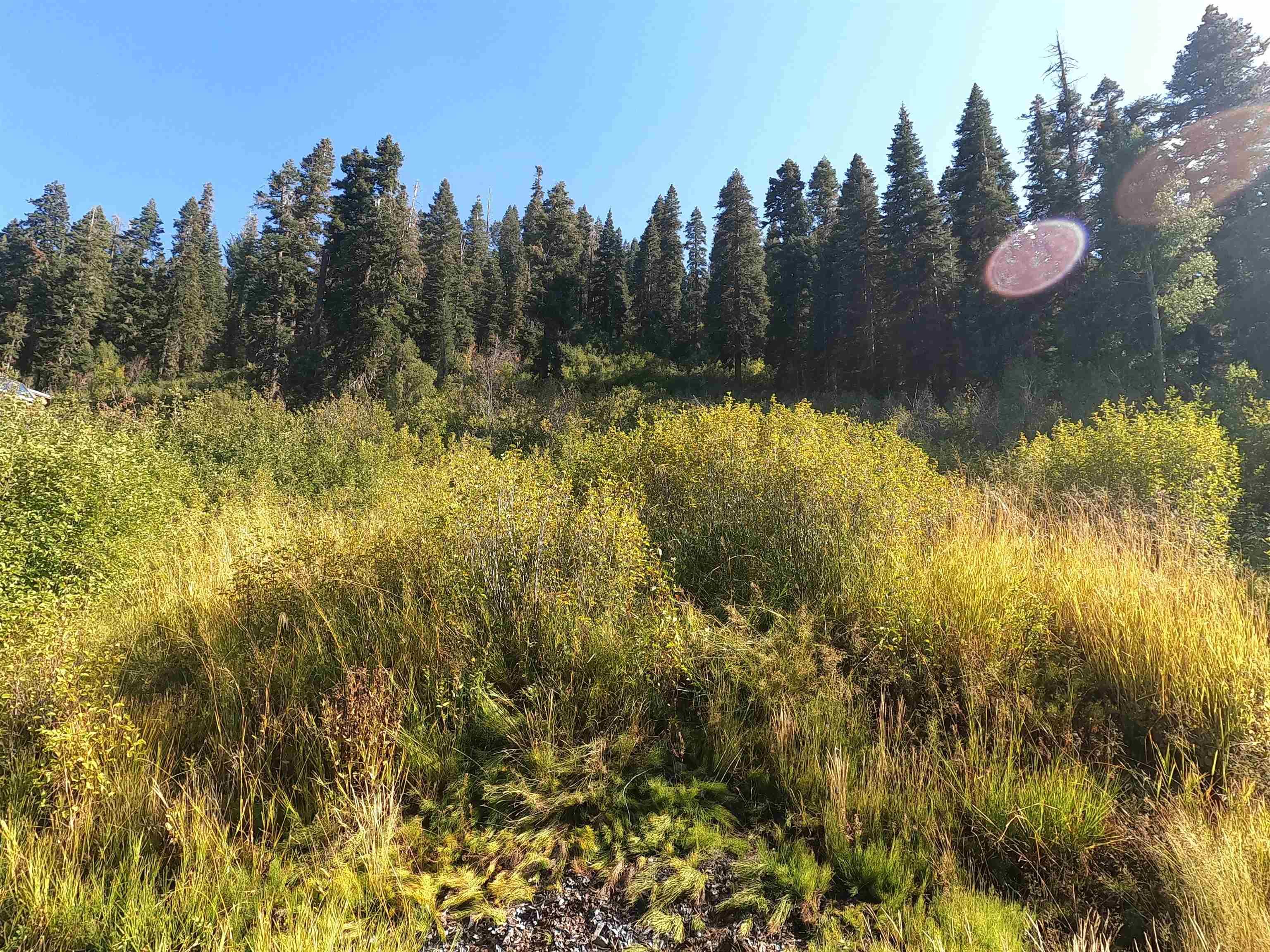 Image for 1051 Snow Crest Road, Alpine Meadows, CA 96146-9745