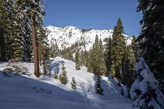 Listing Image 17 for xxxxx Alpine Meadows Road, Alpine Meadows, CA 96146-9837