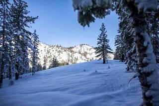 Listing Image 19 for xxxxx Alpine Meadows Road, Alpine Meadows, CA 96146-9837