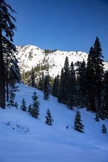 Listing Image 11 for xxxxx Alpine Meadows Road, Alpine Meadows, CA 96146-9837