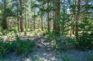 Listing Image 13 for 11861 Bottcher Loop, Truckee, CA 96161