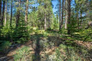 Listing Image 14 for 11861 Bottcher Loop, Truckee, CA 96161