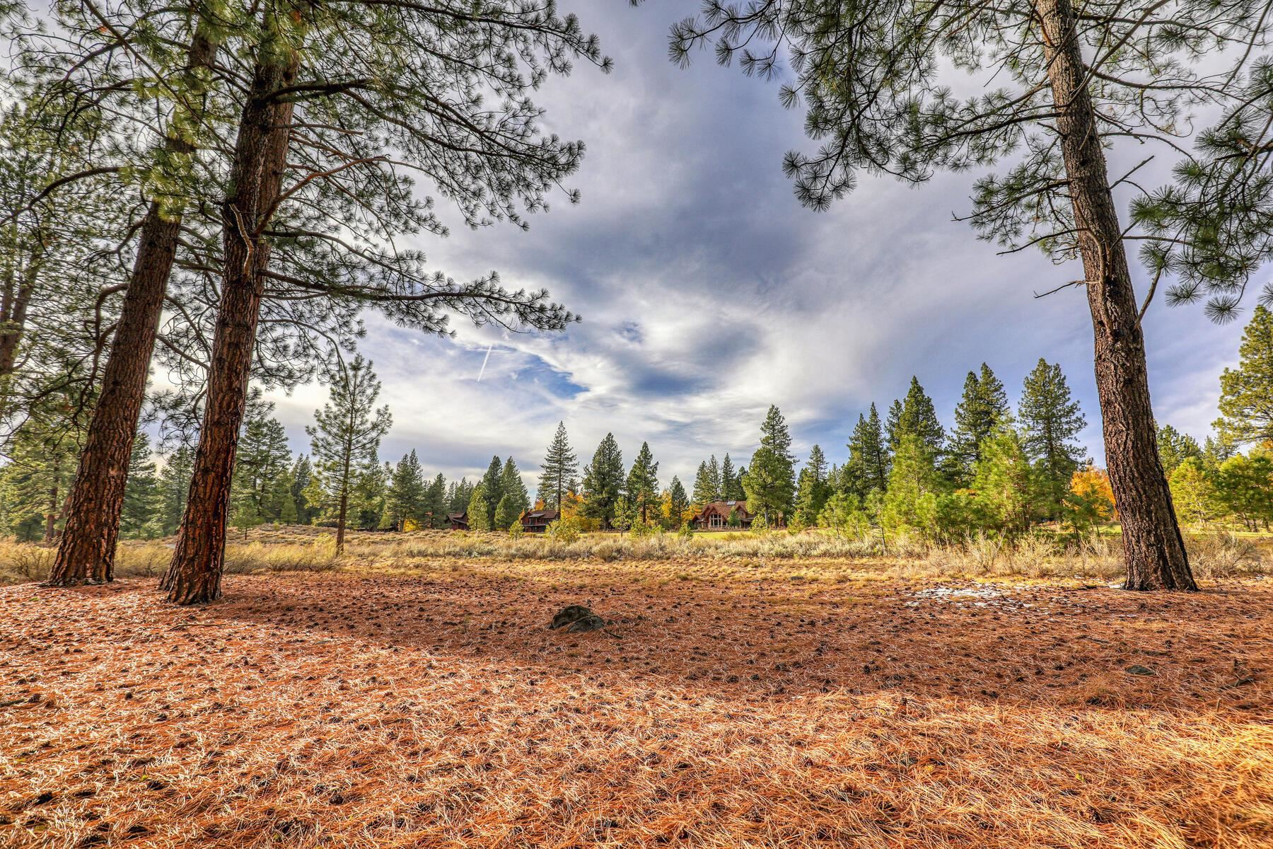 Image for 13058 Lookout Loop, Truckee, CA 96161-4321